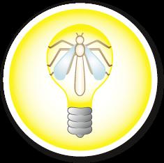 Logo Lichtflittchen
